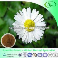 GMP Factory Supply Pure Natural Chamomile P.E 4:1, 10:1