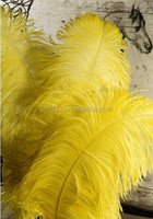 Wedding party decoration ostrich feather