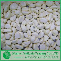 Wholesale china products pure garlic