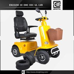 15km/h fashion life style BRI-S03 cerc car electric