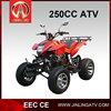 250cc EEC All Terrain Vehicle/ATV Quad