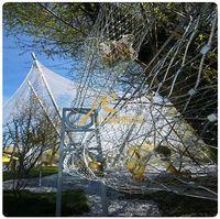 Anping stainless steel wire rope mesh,bird netting