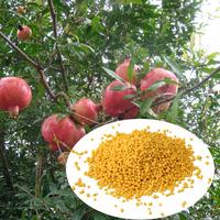 water soluble fertilizer urea 46% organic nitrogen with good price