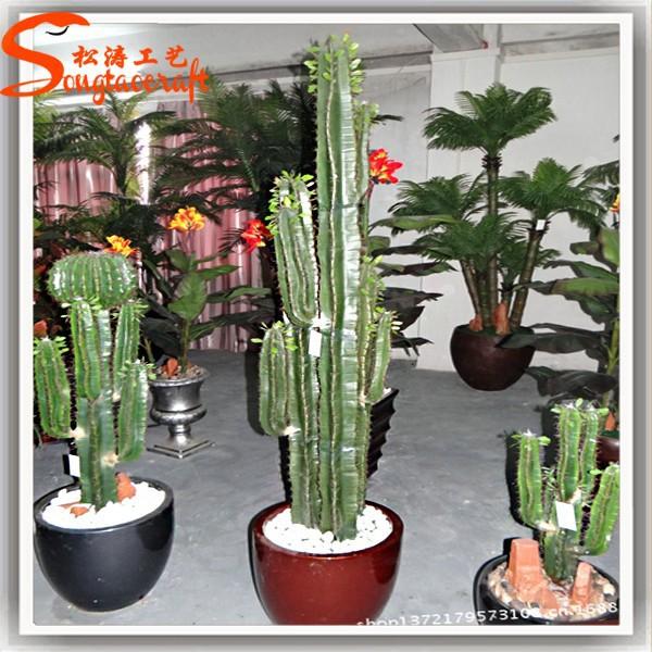 2015 wholesale outdoor grafted cactus plants artificial for Plante de decoration exterieur