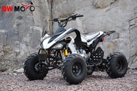 QWMOTO 250cc QUAD ATV Bike 250cc 4 Wheelers Buggy Sports Style with 8 Inch wheels 250cc ATV
