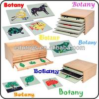Edu Factory Biology Puzzles Montessori Materials Toys Teaching Aids