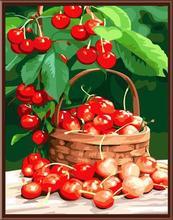 venta al por mayor SGS CE digital DIY 40 * 50 pintura de frutas en lona al óleo por número