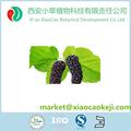 Pure Natural Mulberry extrato da fruta com Anthocyanidin