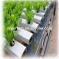 Plantación hidropónica tubo de PVC y accesorios