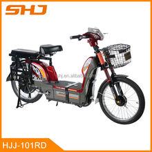 500W Long Range Strong E-Bike Heavy loading capacity