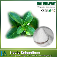 Stevia Rebudiana Extract, Stevia leaf extract-Natural low-caloric sweetener