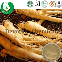 Raw material Anticancer Panax Ginseng Extract 95%
