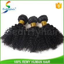 Fashional design Kinky Curl hair virgin brazilian wet and wavy hair