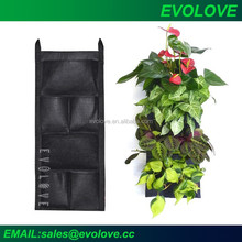 New home and garden products