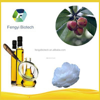 Edible Camellia Oil / Camellia nut Oil for cooking / cooking oil