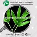 100% natural de folhas de bambu extrato