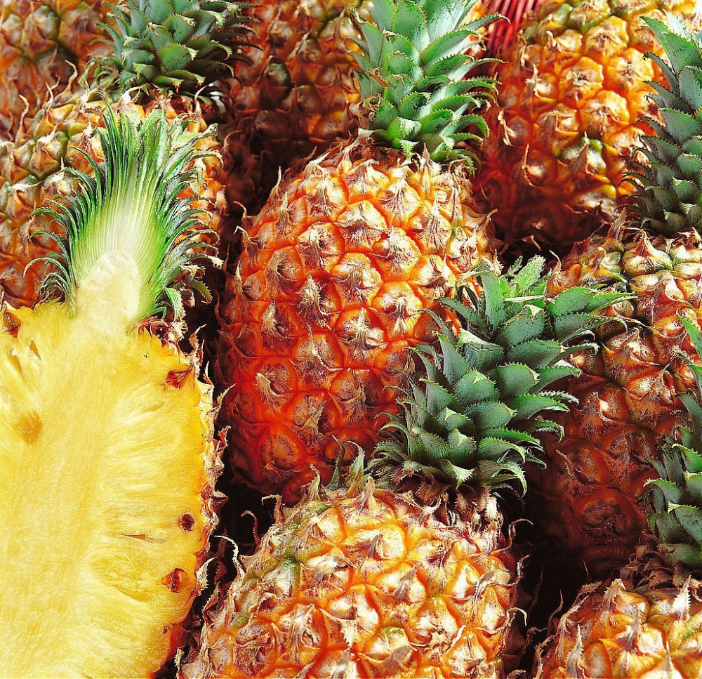 dried pineapple powder , 100% Natural bromelain powder/bromelain powder extract/pineapple enzyme bromelain