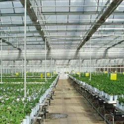 transparent PC hollow sheet for agricultural greenhouse easy install and handle