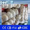 white garlic packaging net bag