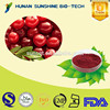 Medical Raw Material Eye Protection 25% Proanthocyanidins Cranberry Juice Extract