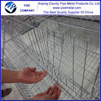china manufacturer high capacity A shape 4 tier chicken cages