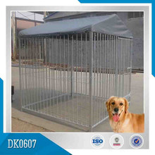 big outdoor dog kennel