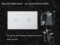Home Automation US 2 Gang 1 Way Wireless Remote capacitive Touch Motion Sensor Wall Light Switch Cover