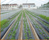 LDPE Agricultural mulch filmBiodegradable agricultural plastic mulch film ground black cover Biodegradable plastic film