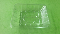 rectangle clear disposable plstic blueberry fruit trays