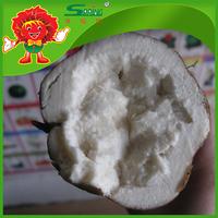 Frozen vegetables supplier cheap price for best Chinese fresh kudzu