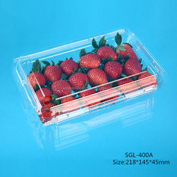 Big Eco-friendly Blister Plastic Fruit Container