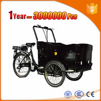 300W motor cargo tricycle with cabin and box with front cargo basket