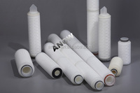 """0.22um PES 30"""" Filter cartridge for Cell and tissue culture media"""