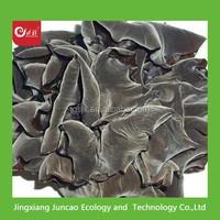 Names of Mushrom Dried Black Fungus, Dried wood ear Mushroom, Black Agaric
