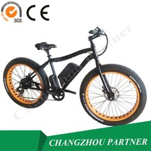China Made High Quality And High equipment Fat Tire With Back Seat Electric Bicycle (PNT-TDE-07)
