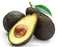 Avocado oil and powder subcritical solvent extraction plant
