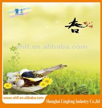 Sticker manufacturer / wall sticker / basketball wall sticker