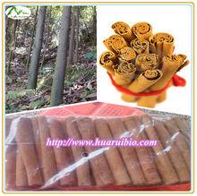 Cinnamon(5--6cm)