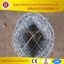 grass boundary galvanized barbed wire, barbed wire