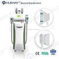 Newest slimming technolgoy! 3rd Generation cryolipolysis machine nbw-c325