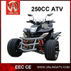 JEA-93-08 Chinese Famous 250CC Trike Motorcycle For Adults