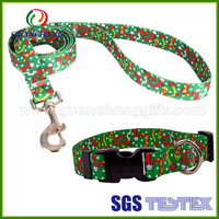 Custom dog collar with name, dog sex dog slip collar leash for christmas