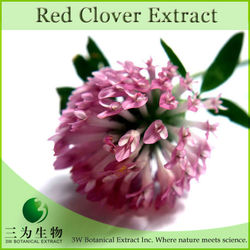 Top Quality Red Clover Extract Isoflavones 40% Powder