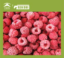 frozen raspberry bulk frozen raspberries bulk frozen raspberries