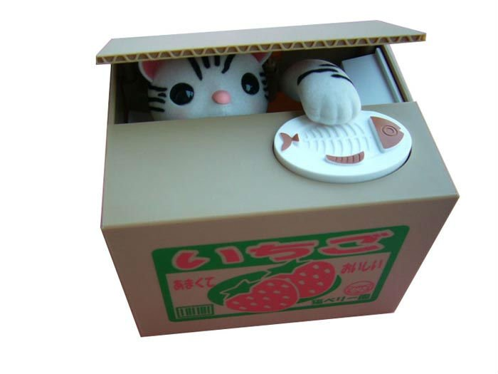 Cat In Box Coin Bank