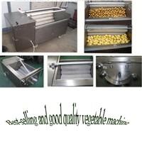 Hot sale India Australia Canada Pakistan Nepal material professional fruit and vegetable washer machine