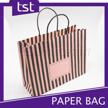 Brand Paper Bag Craft with Cotton Handle