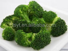 China 2014 year cheapest New IQF frozen green broccoli with good quality