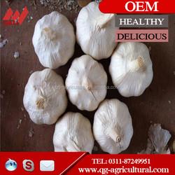 Chinese 2015 new crop fresh 4.5cm,5cm,5.5cm,6cm nature garlic