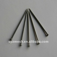 BWG18--BWG4 galvanized common nails series from china factory